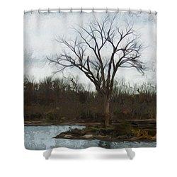 Until Spring Shower Curtain by Jack Zulli