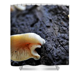 It's Alive Shower Curtain