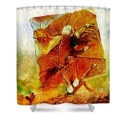 Untitled Shower Curtain by Henryk Gorecki
