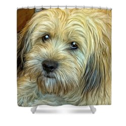 Chewy Shower Curtain by Michael Pickett