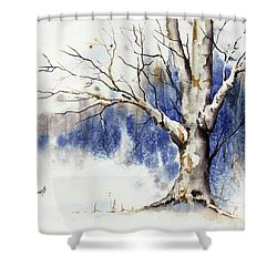 Untitled Winter Tree Shower Curtain