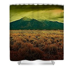 Untitled Xxv Shower Curtain