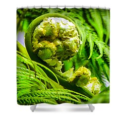 Unveiling Life Shower Curtain by Karen Wiles