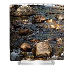 Up A Creek Shower Curtain