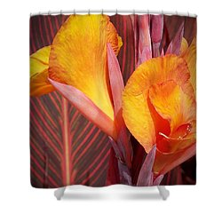 Up Close And Personal Shower Curtain by Chalet Roome-Rigdon