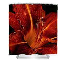 Up Close And Personal Shower Curtain by Jeanette C Landstrom
