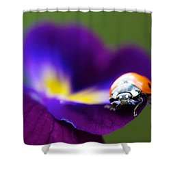 Up Close And Personal Shower Curtain by Lisa Knechtel