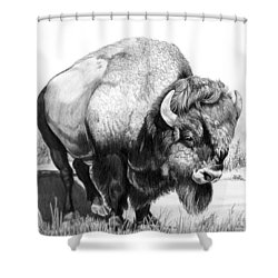 Up Close And Personal With Bison Shower Curtain