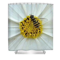 Up Close With The Bee And The Cosmo Shower Curtain by Verana Stark