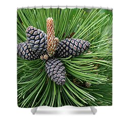 Up Cone Shower Curtain