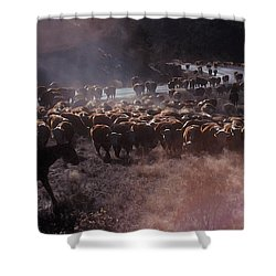 Up The Road Shower Curtain by Jerry McElroy