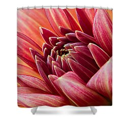 Uplifting 2 Shower Curtain by Mary Jo Allen