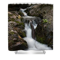 Upper Pup Creek Falls Shower Curtain