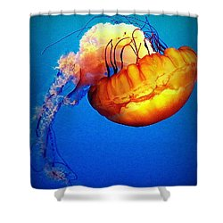 Upside Down Jelly Shower Curtain by Faith Williams