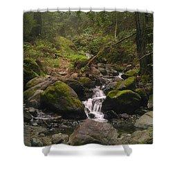 Upstream Shower Curtain by Justin Moranville