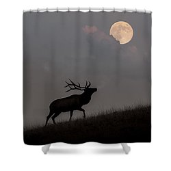 Upwardly Mobile - Yellowstone National Park Shower Curtain by Sandra Bronstein