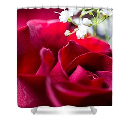 Valentine Shower Curtain by Alex Lapidus