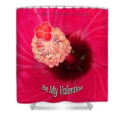 Valentine We Have So Much In Common Shower Curtain by Thomas Woolworth