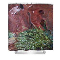 Shower Curtain featuring the painting Valley Of Fire State Park by Linda Feinberg