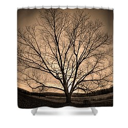 Valley Of Promise Shower Curtain by Mark Six