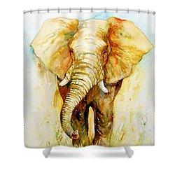 Valorous Shower Curtain