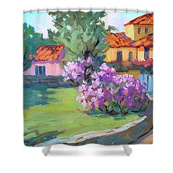 Van Gogh Hospital St. Remy Shower Curtain
