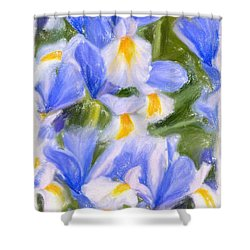 Van Gogh's Iris Shower Curtain by Angela A Stanton