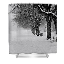 Vancouver Winter Trees Shower Curtain