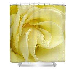 Vanilla Swirl Shower Curtain by Patti Whitten