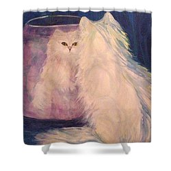 Vanity Shower Curtain by Carolyn LeGrand