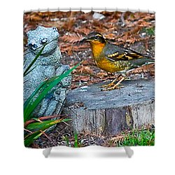 Shower Curtain featuring the photograph Vared Thursh by Brian Williamson
