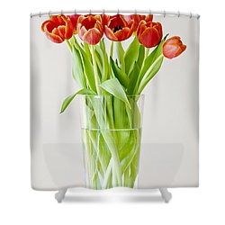 Vase Of Tulips Shower Curtain by Dee Cresswell