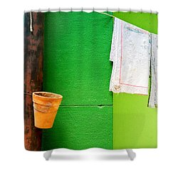 Vase Towels And Green Wall Shower Curtain by Silvia Ganora