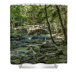 Shower Curtain featuring the photograph Vaughan Woods Bridge by Jane Luxton