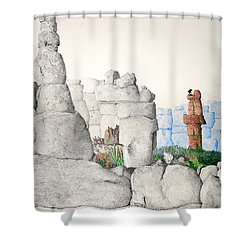 Vaulting Shower Curtain by A  Robert Malcom