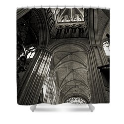 Vaults Of Rouen Cathedral Shower Curtain by RicardMN Photography