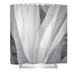 Veil Shower Curtain by Adam Romanowicz