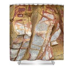 Veined Rock Shower Curtain by Barbie Corbett-Newmin
