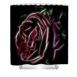 Velvet Rose 1 Shower Curtain