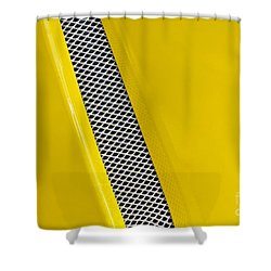 Vented Shower Curtain by Linda Bianic
