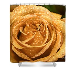 Very Wet Rose Shower Curtain by Debbie Portwood