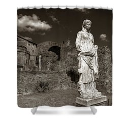 Vestal Virgin Courtyard Statue Shower Curtain