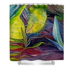 Via Dell Amore Shower Curtain