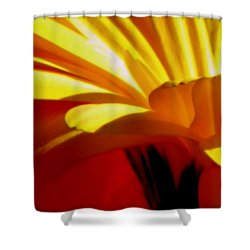 Vibrance  Shower Curtain by Karen Wiles