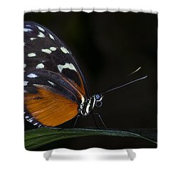 Vibrant Beauty Shower Curtain