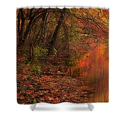 Vibrant Reflection Shower Curtain