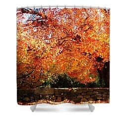Vibrant Tree Shower Curtain