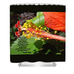 Victor Hugo Shower Curtain