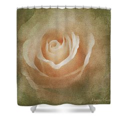 Victorian Vintage Pink Rose Shower Curtain