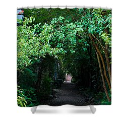 View Down Philadelphia Alley Shower Curtain